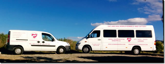 Pet Transport Spain to UK, UK to Spain